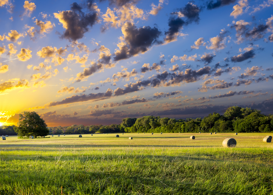 Proposed USDA budget cuts hold bipartisan implications